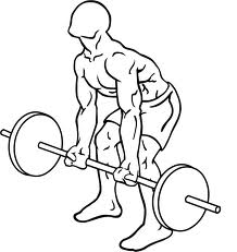 Reverse Grip Bent-Over Rows starting position