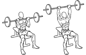military press shoulder press exercise