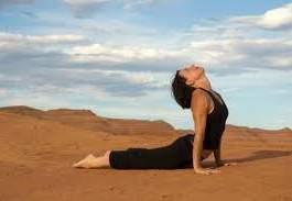 Sun Salutes Yoga