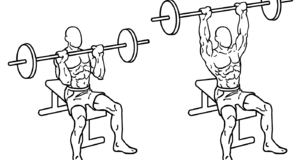 Shoulder Press Exercise