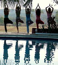 Tree Pose Yoga Exercises