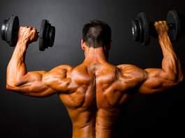 Shoulder Workout Plan