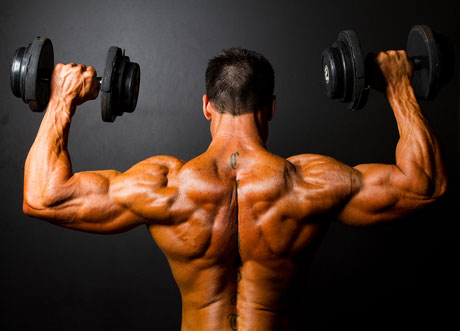Shoulder Workout Plan