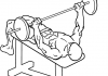 decline-bench-press