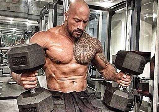 The Rock Hercules Workout Chest Dumbbells