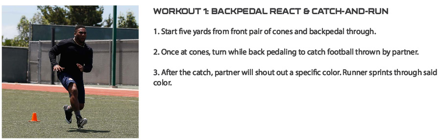Backpedal-react-and-catch-exercise